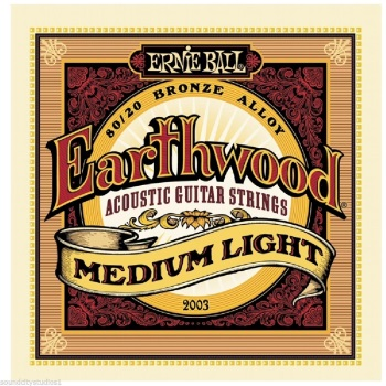 Ernie Ball Earthwood 80/20 Bronze Wound Med-Light